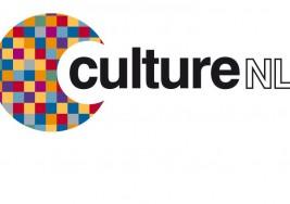 CultureNL Public Consultation Report